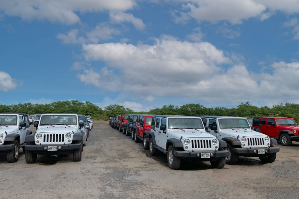 Vehicle rental lot at the airport on Maui